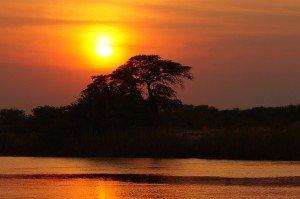 Botswana Twilight