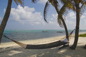 Cayman Island image