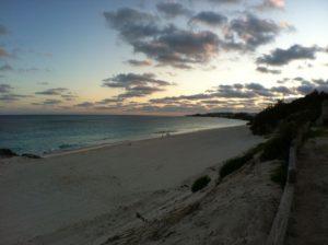Bermuda Ocean