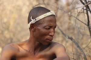 Botswana Nature