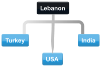 Example Lebanon conference call with Turkey, India and USA