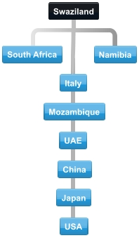 Diagram of normal collaboration between Swaziland trading partner countries.